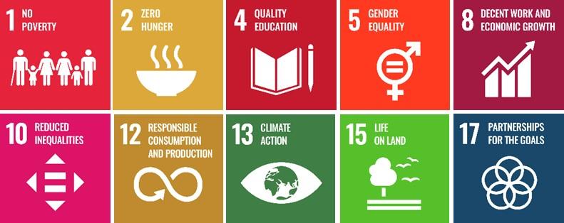 Illustrazione di 10 SDGs